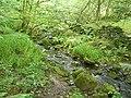 Bradshaw Clough, Merry Dale, Slaithwaite - geograph.org.uk - 1418887.jpg