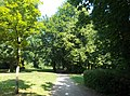 BraunsbedraStadtpark.JPG