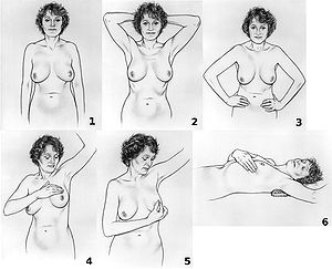 Breast self-exam NCI visuals online.jpg