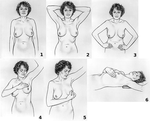 Breast self-exam NCI visuals online