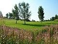 Bridge of Allan Golf Club Sunnylaw - geograph.org.uk - 48717.jpg