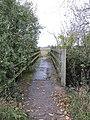 Bridge over the Ditch - geograph.org.uk - 1582149.jpg