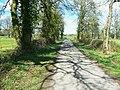 Bridleway, near Burridge Heath - geograph.org.uk - 1246011.jpg
