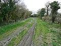 Bridleway to Burbage - geograph.org.uk - 1229287.jpg