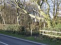 Bridleway to Rowlands Castle - geograph.org.uk - 351246.jpg