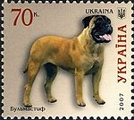 Bullmastiff Ukraine 2007 stamp.jpg