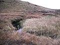 Burn under Parlan Hill - geograph.org.uk - 1537258.jpg