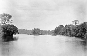 Rawas River - Batang River in the Soeroelangoen district, Rawas, Sumatra