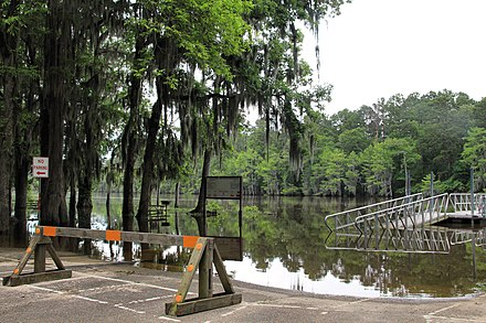 Boat ramp and pier flooded at Caddo Lake State Park Caddo lake flooded 2015.jpg