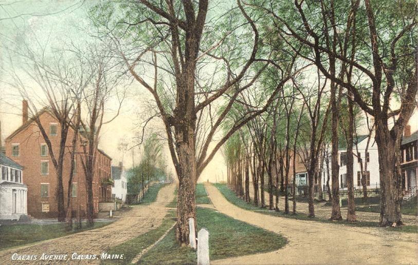 Calais Avenue, Calais, ME