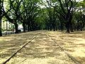 Calle La Pampa.jpg