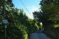 Camí de Blancafort1.jpg