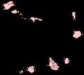 Cape Verde-Paul.png