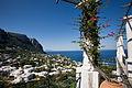 Capri - 7151.jpg