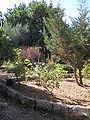 Capuchin Monastery P6070085.JPG
