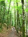 Cascades du Hérisson (6045583240).jpg