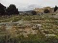 Castillo de Sagunto 043.jpg