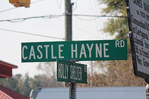Castle Hayne, North Carolina - Sign for Castle Hayne Rd (US 117) in the center of Castle Hayne
