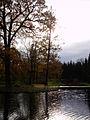 Catherine Park in october (1).jpg