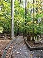 Catoctin Mountain Park-17 (4010609032).jpg