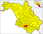 Locatio Cerasi in provincia Salernitana