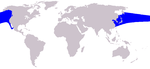 Pacific white-sided dolphin range