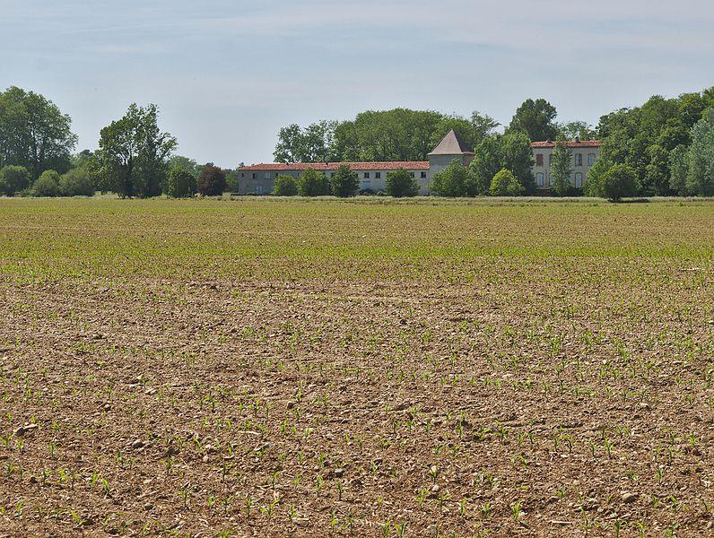 Château Bertier, derrière un champs de maïs