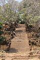 Champasak, Laos, Wat Poo 08.JPG