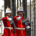 Changing of the Guard duo - Royal Gibraltar Regiment.jpg