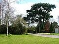 Chapel, Maunby - geograph.org.uk - 440917.jpg
