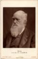 Charles Darwin 1877.png