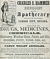 Charles S Hammer, Druggist and Apothecary (1867) (ADVERT 143).jpeg