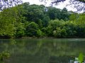 Chattahoochee River National Recreation.jpg