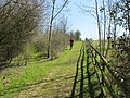Chiltern Way by Bledlow Ridge - geograph.org.uk - 1815374.jpg