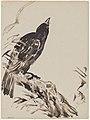 Chinoiserie, een vogel, James Ensor, circa 1880-1890, Koninklijk Museum voor Schone Kunsten Antwerpen, 2710 14.001.jpeg