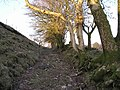 Clawdd Mawr - geograph.org.uk - 1113913.jpg