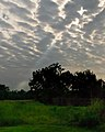 Clouds and Sun (5454598161).jpg