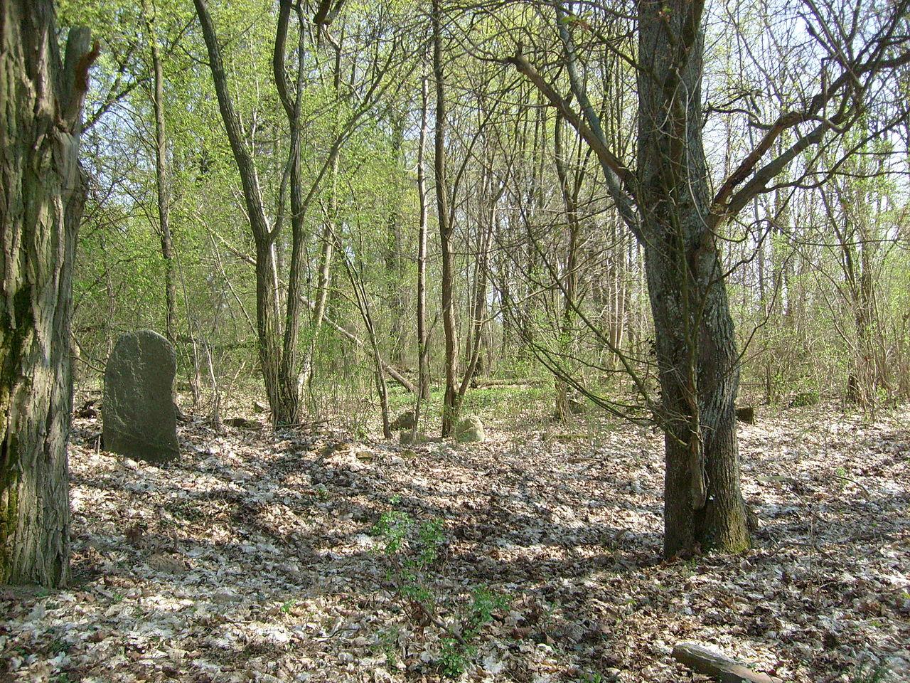 Cmentarz0001 01.jpg