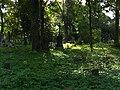 Cmentarz Prawosławny w Suwałkach (66).JPG