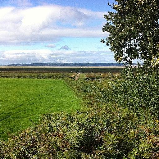 Coastal Path near Weobly Castle - geograph.org.uk - 2082375