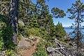 Coastal Trail, East Sooke Regional Park, British Columbia, Canada 24.jpg