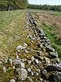 Cobblestone wall of causeway across Red Moss - geograph.org.uk - 421357.jpg