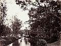Collectie NMvWereldculturen, TM-60004952, Foto, 'Kali Tanah Abang, Batavia', fotograaf toegeschreven aan Woodbury & Page, 1857-1872.jpg