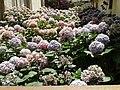 Colors de Portbou. - panoramio.jpg