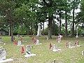 Confederate Cemetery (490601350).jpg
