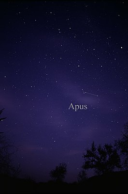 Constellation Apus.jpg
