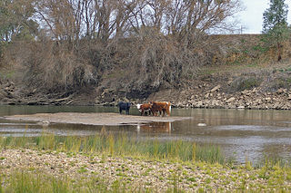 2000s Australian drought