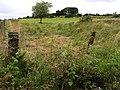 Craignayarrow - geograph.org.uk - 513240.jpg