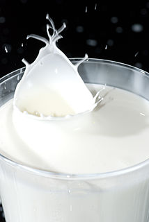 Cream Dairy product