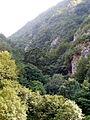 Crna Rijeka Gorge 8.JPG